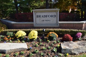 Bradford of Novi Michigan