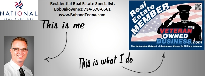 Novi Michigan Real Estate Agent Banner